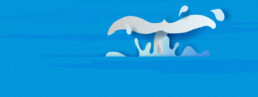 Acquiring enterprise accounts is like landing a white whale.